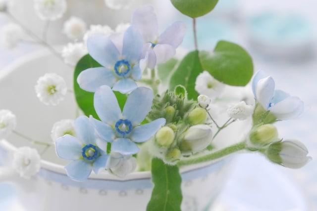 カップに花
