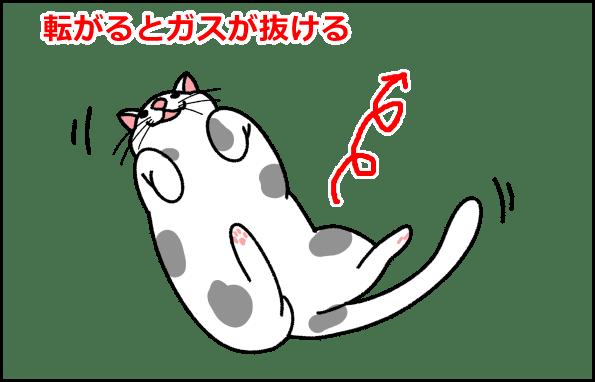 ゴロゴロ転がる猫イラスト
